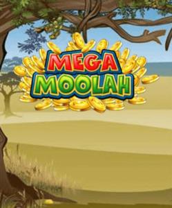 Over 5,5 millioner euro i potten på Mega Moolah – spill hos Casumo Casino